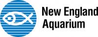 New England Aquarium (or Boston on Your Own)
